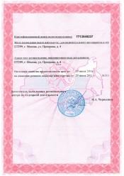 Лицензия обеспечения пожарной безопасности Лист 2